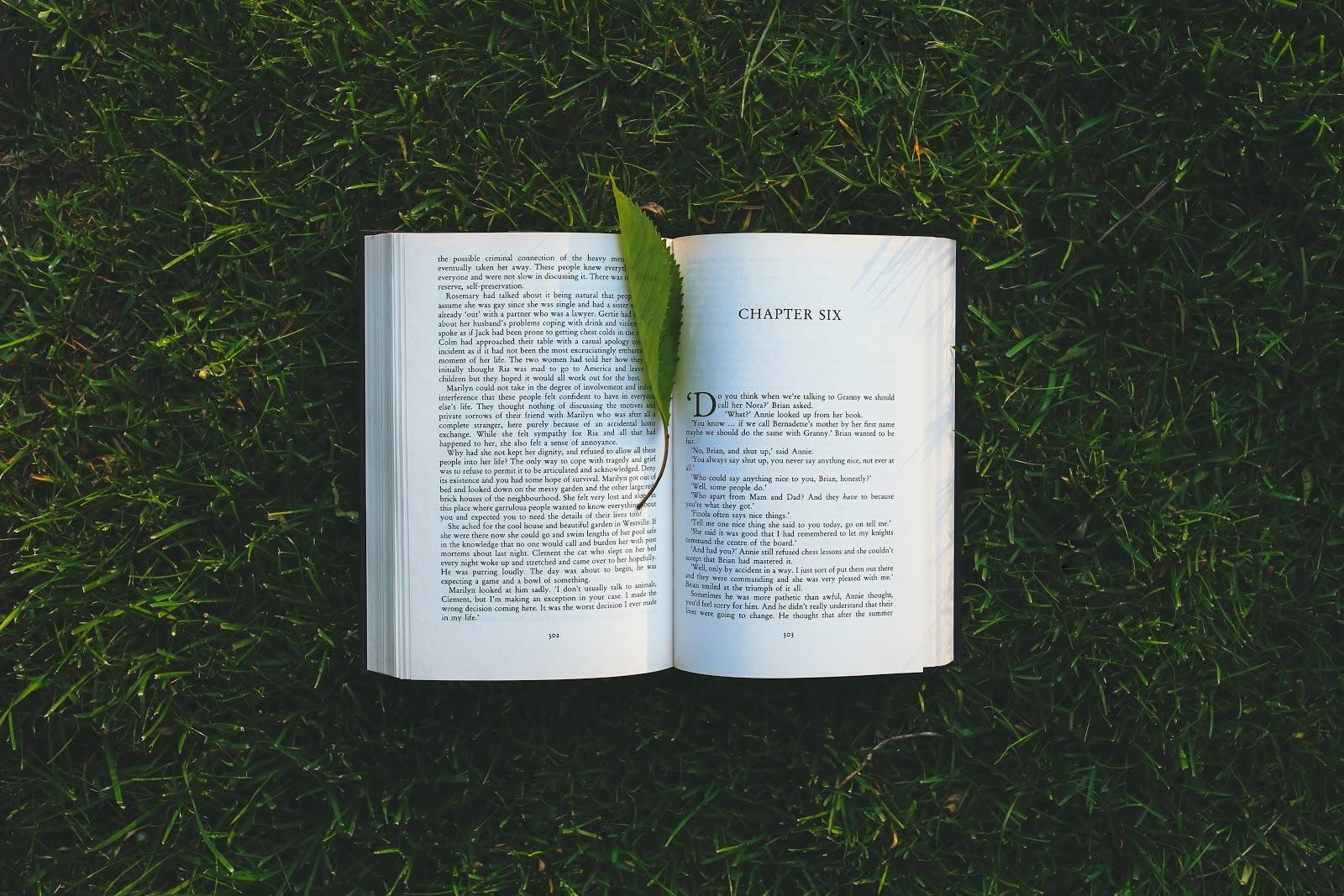 Book on grass - image credit: Pexels / kaboompics.com