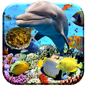 Aquarium Fish Live Wallpaper 2018