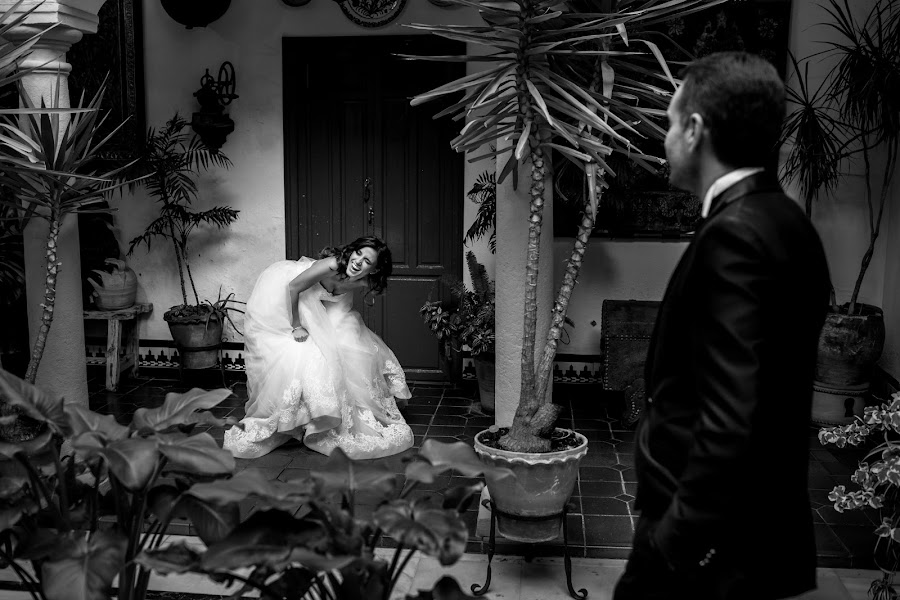 Wedding photographer Albert Pamies (albertpamies). Photo of 12.01.2017