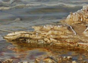 Photo: Salzkrustenbildung im Uferbereich des Toten Meeres. 1