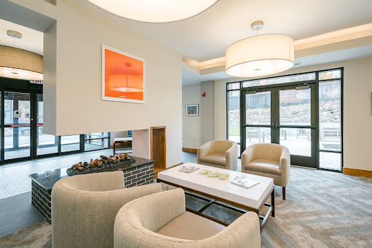 Community lounge area with fireplace and plush seating