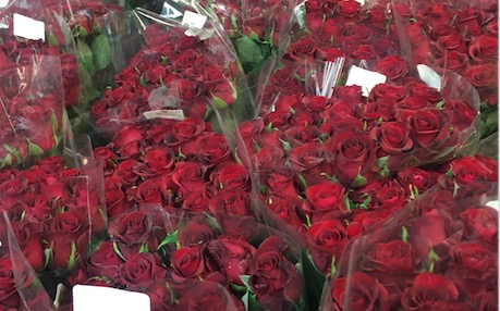 Fancy spending almost R400 for a bunch of roses? That's how much these will set you back at Flower Spot.