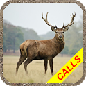 Deer hunting calls:Whitetail, Wapiti, moose sounds icon