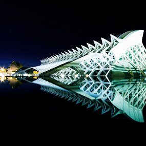Valencia by Sander Monster - Buildings & Architecture Architectural Detail ( reflection, city of arts and sciences, architecture, valencia, spain, city )