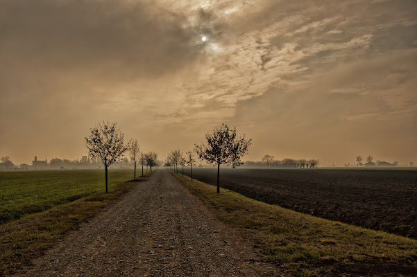 The way home di Gian Piero Bacchetta