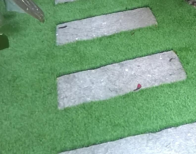 Xài cỏ nhân tạo khi lắp ráp cần keo dán chuyên cỏ