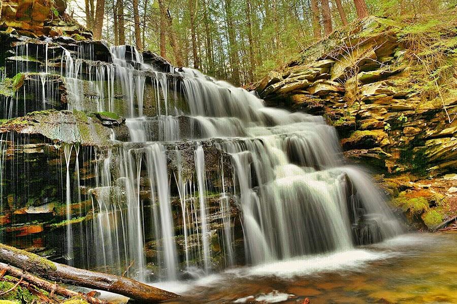 lockhaven falls by Travis Houston - Landscapes Waterscapes ( waterfalls, nature, waterscape, waterfall, pennsylvania, nikon,  )