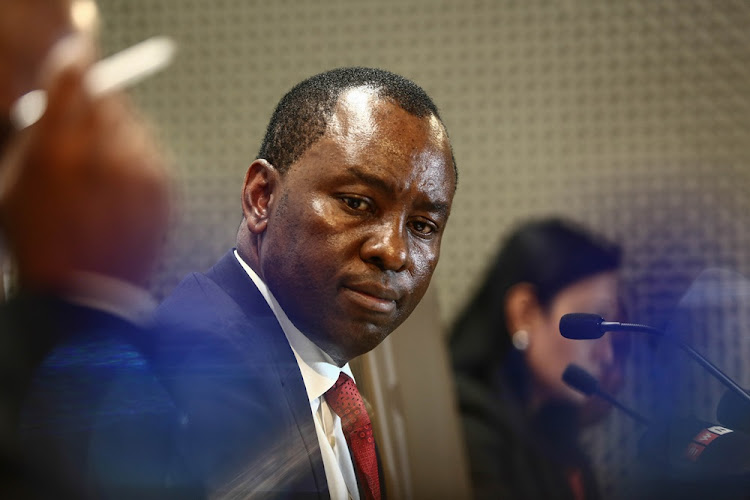Mineral Resources Minister Mosebenzi Zwane travelled to Dubai on the Guptas' private jet with Rajesh Gupta.