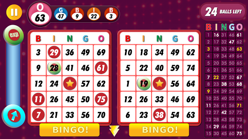 Bingo Classic Game - Offline Free apkpoly screenshots 15