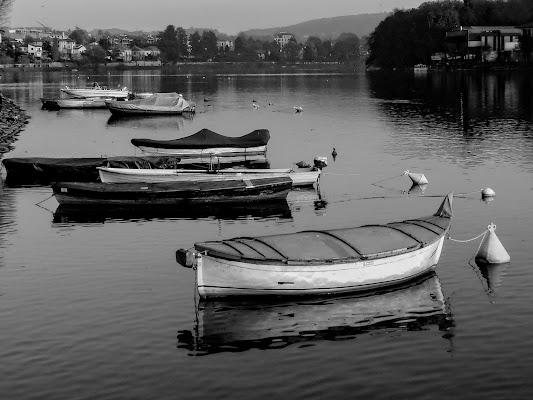 Barche di Cenati Gino