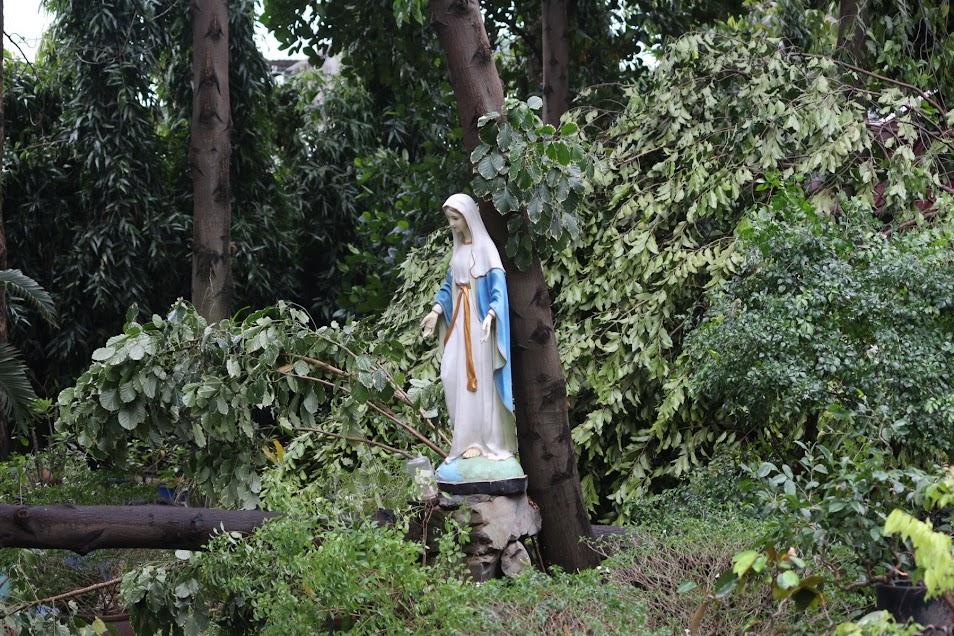 Phép lạ: Tượng Đức Mẹ Học viện Dòng Tên vẫn đứng vững trong cơn gió lốc - Ảnh minh hoạ 3