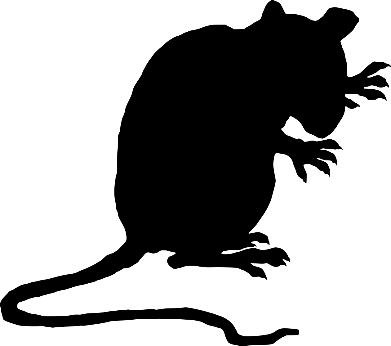 The Rat.png
