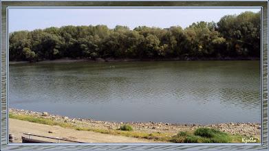 Photo: Tisza part