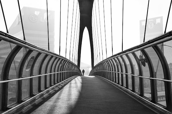 Crossing the city di Madison