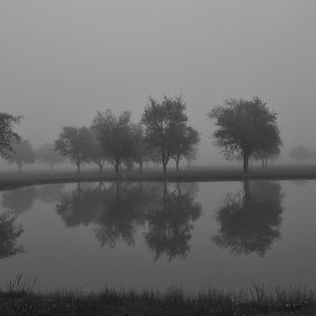early fog by Thomas Fitzrandolph - Landscapes Waterscapes ( water, nikon d3100, waterscape, fog, niagara county ny, morning, lockport ny,  )