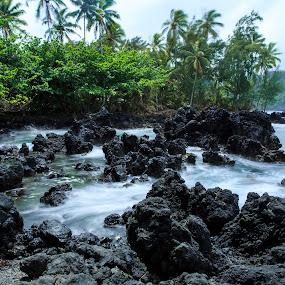 Black Rocks by Daljit Singh - Landscapes Beaches ( road to hana, maui, volcanic rock, ocean, beach, hawaii,  )