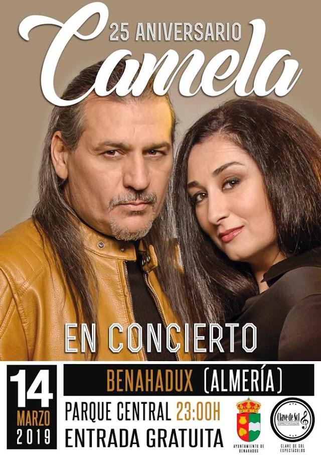 Cartel del concierto de Benahadux.