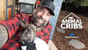 Animal Cribs thumbnail