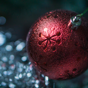Christmas Ball Bokeh by Justin Hyder - Public Holidays Christmas ( pine, seasonal, year, blur, winter, bauble, blurry, holiday, fir, merry, red, ball, beautiful, ornament, december, season, up, close, decoration, xmas, new, snowflake, green, celebrate, festive, night, tree, abstract, christmas, decorative, celebration, close-up, traditional, warm, round, closeup, light, background, bokeh, hanging, object )
