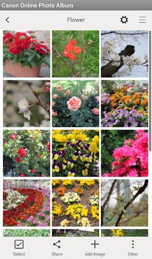 Canon Online Photo Album 1.7.0 Windows u7528 4