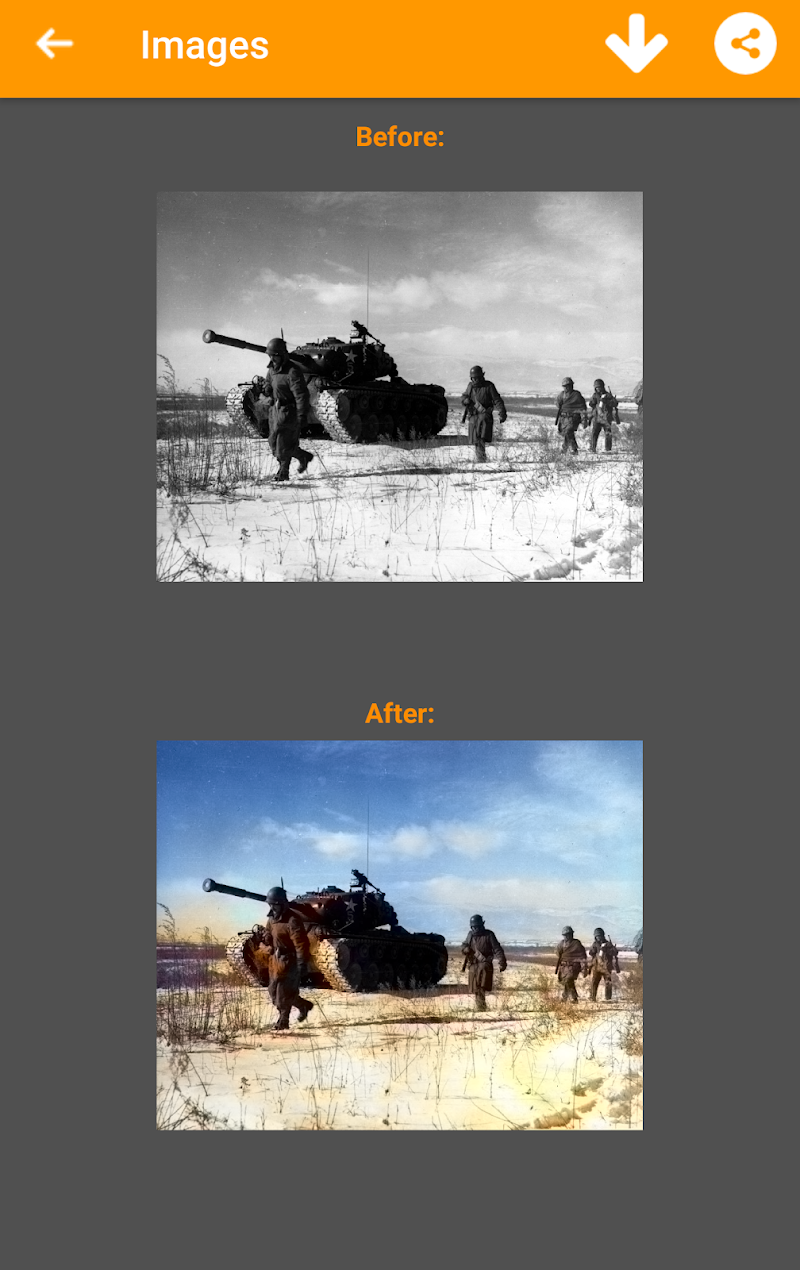 Black and White Photo Colorizer - Chromatix Screenshot 5
