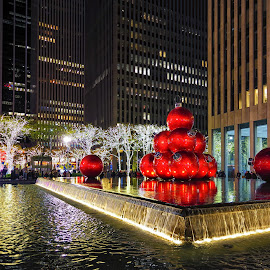 Christmas in NYC by Carol Ward - Public Holidays Christmas ( night photography, christmas, holiday decorations, new york city, new york, nyc, nightscape )