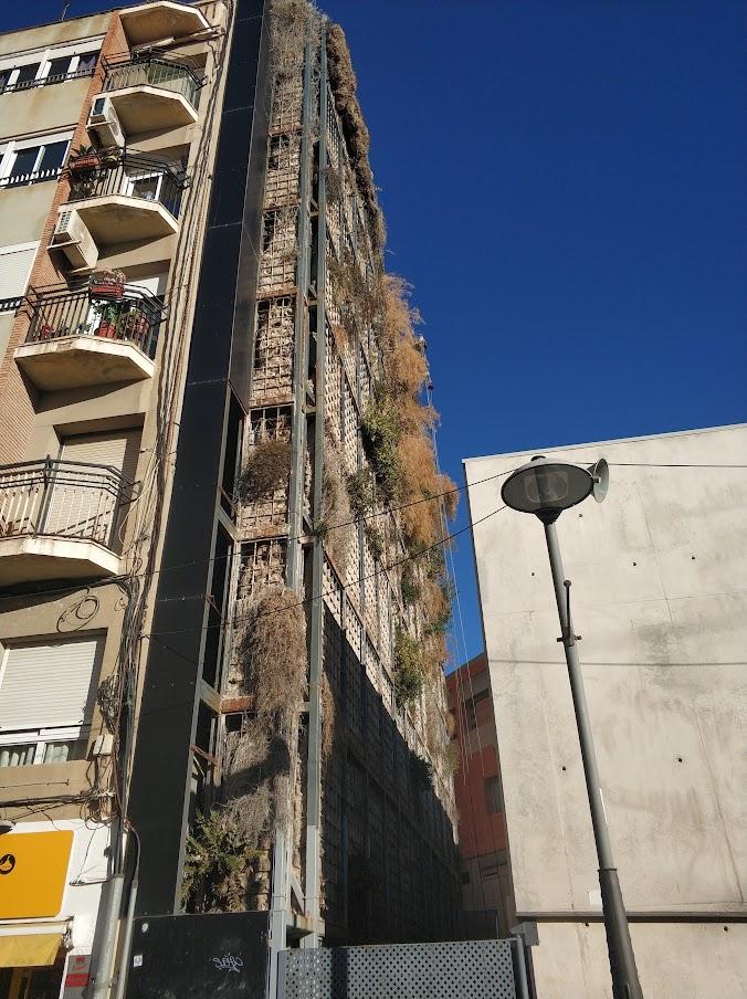 jardinería vertical en Alicante