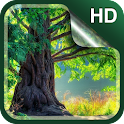 Forest Live Wallpaper HD icon