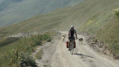 Auf dem Weg von Uschguli zum 2623 m hohen Zagaro Pass 'begleiten' uns 3 Hunde.