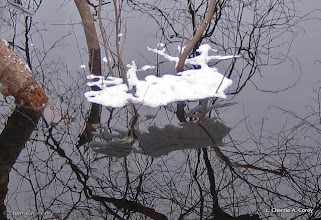 Photo: Winter Dakini
