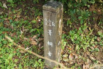 Photo: 這屬於菁桐古道,3.5K那應該是走到磐石嶺
