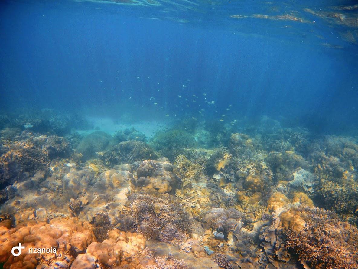 Coral Garden Marine Park Travel Guide