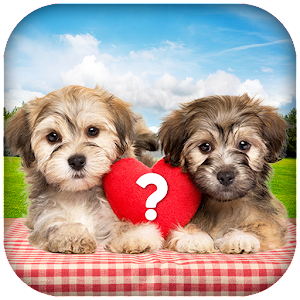 Love Quiz - Boyfriend Test, Girlfriend Test Icon