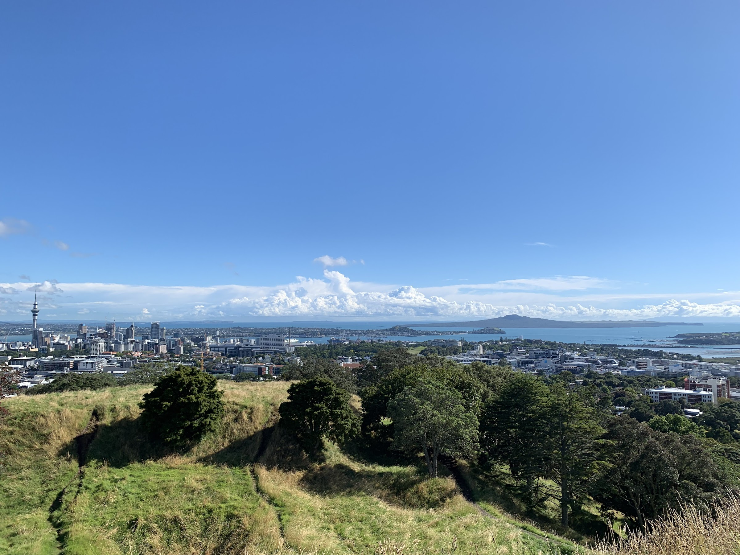 Visiting Auckland…