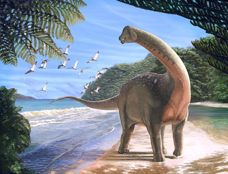 An artists's impression of the new titanosaurian dinosaur, Mansourasaurus shahinae, on a coastline in what is now the Western Desert of Egypt approximately 80 million years ago.