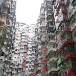 Yick Cheong Building in Hong Kong, , Hong Kong SAR