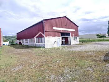 locaux professionels à Saint-Julien-du-Sault (89)