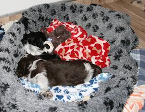 Photo: und dabei eingeschlafen