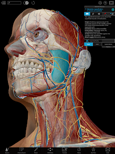 App Human Anatomy Atlas 2019: Complete 3D Human Body APK for Windows Phone