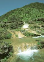 Photo: Water Springs in Dohfar during monsoon season