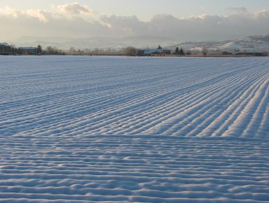 L'inverno in pianura di cristins