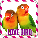 Master and Therapy Lovebird icon