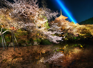 Photo: The Midnight Wonder Garden  These are the lower gardens of Kiyomizu-dera in one of the older parts of Kyoto.  I've been to this area multiple times, and I try to go at different times of the day and different seasons.  I'd love to be lucky once and catch it in the snow...  I suppose that would mean I need to go in the winter or something.   from the blog www.stuckincustoms.com