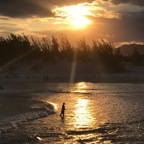 Brasil Beach by Mylene Rizzo - Landscapes Beaches ( nature, beach, sunset, golden, brasil )