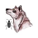 TB Wolf icon