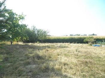 terrain à Saint-Cyr-sur-Menthon (01)