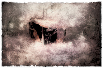 Photo: 'The Hide-away'