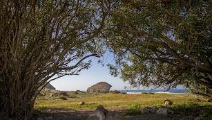 La playa de Mónsul, vista desde una zona con abundante vegetación.