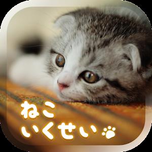 猫の癒し育成ゲーム3D*無料*