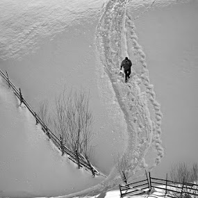 by Ionut Harag - Black & White Landscapes ( fence, person, winter, black and white, snow, shadows )